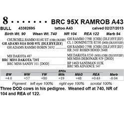 Lot 8 - BRC 95X RAMROB A43