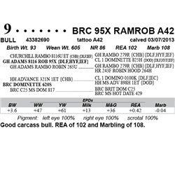 Lot 9 - BRC 95X RAMROB A42