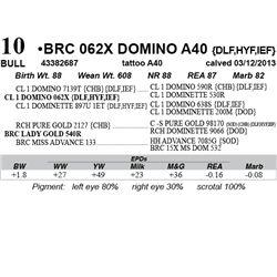 Lot 10 - BRC 062X DOMINO A40 {DLF,HYF,IEF}