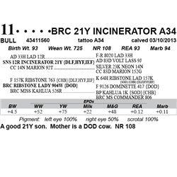 Lot 11 - BRC 21Y INCINERATOR A34