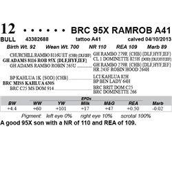 Lot 12 - BRC 95X RAMROB A41