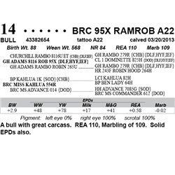 Lot 14 - BRC 95X RAMROB A22
