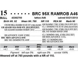 Lot 15 - BRC 95X RAMROB A46