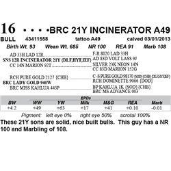 Lot 16 - BRC 21Y INCINERATOR A49