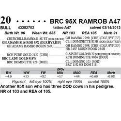 Lot 20 - BRC 95X RAMROB A47
