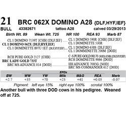 Lot 21 - BRC 062X DOMINO A28 {DLF,HYF,IEF}