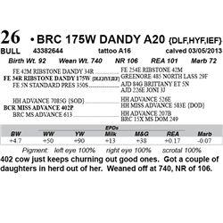 Lot 26 - BRC 175W DANDY A20 {DLF,HYF,IEF}