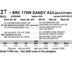Lot 27 - BRC 175W DANDY A24 {DLF,HYF,IEF}