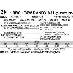 Lot 28 - BRC 175W DANDY A31 {DLF,HYF,IEF}