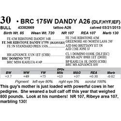 Lot 30 - BRC 175W DANDY A26 {DLF,HYF,IEF}