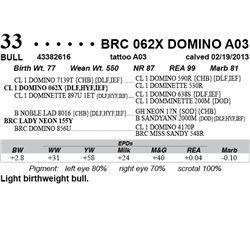 Lot 33 - BRC 062X DOMINO A03