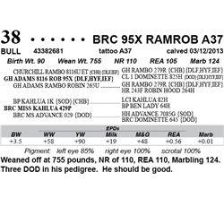Lot 38 - BRC 95X RAMROB A37