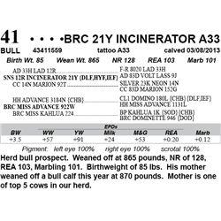 Lot 41 - BRC 21Y INCINERATOR A33