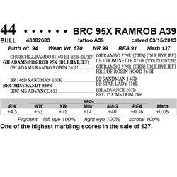 Lot 44 - BRC 95X RAMROB A39