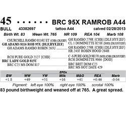 Lot 45 - BRC 95X RAMROB A44