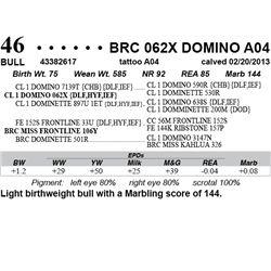 Lot 46 - BRC 062X DOMINO A04