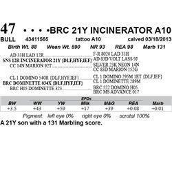 Lot 47 - BRC 21Y INCINERATOR A10