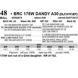 Lot 48 - BRC 175W DANDY A30 {DLF,HYF,IEF}