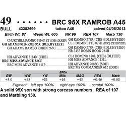 Lot 49 - BRC 95X RAMROB A45