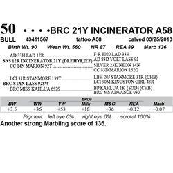 Lot 50 - BRC 21Y INCINERATOR A58