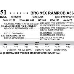 Lot 51 - BRC 95X RAMROB A36
