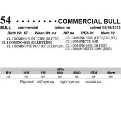 Lot 54 - Commercial Bull