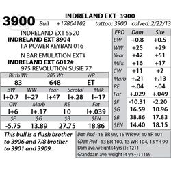 Lot 3900 - INDRELAND EXT  3900