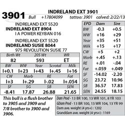 Lot 3901 - INDRELAND EXT 3901