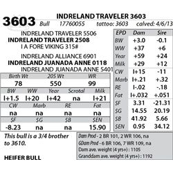 Lot 3603 - INDRELAND TRAVELER 3603