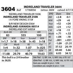 Lot 3604 - INDRELAND TRAVELER 3604