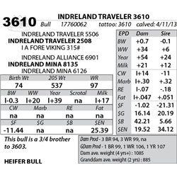 Lot 3610 - INDRELAND TRAVELER 3610