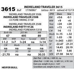 Lot 3615 - INDRELAND TRAVELER 3615