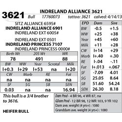 Lot 3621 - INDRELAND ALLIANCE 3621