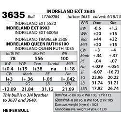 Lot 3635 - INDRELAND EXT 3635