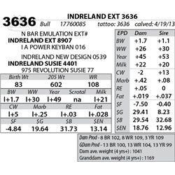 Lot 3636 - INDRELAND EXT 3636