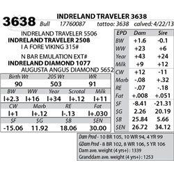 Lot 3638 - INDRELAND TRAVELER 3638