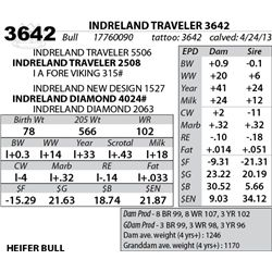 Lot 3642 - INDRELAND TRAVELER 3642