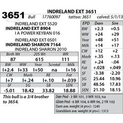 Lot 3651 - INDRELAND EXT 3651