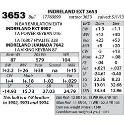 Lot 3653 - INDRELAND EXT 3653