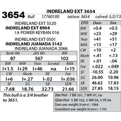 Lot 3654 - INDRELAND EXT 3654