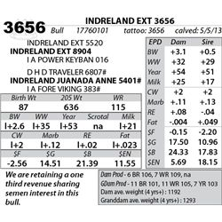 Lot 3656 - INDRELAND EXT 3656