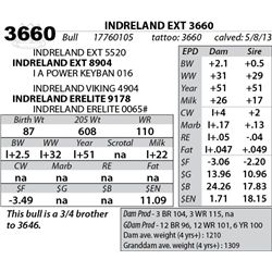 Lot 3660 - INDRELAND EXT 3660