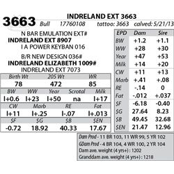 Lot 3663 - INDRELAND EXT 3663