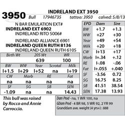 Lot 3950 - INDRELAND EXT 3950