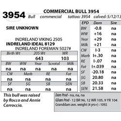 Lot 3954 - COMMERCIAL BULL 3954