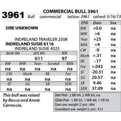 Lot 3961 - COMMERCIAL BULL 3961
