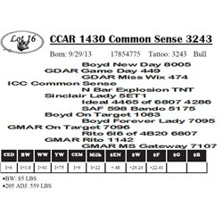Lot 16 - CCAR 1430 Common Sense 3243