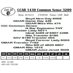 Lot 18 - CCAR 1430 Common Sense 3209