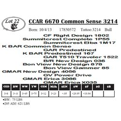 Lot 22 - CCAR 6670 Common Sense 3214