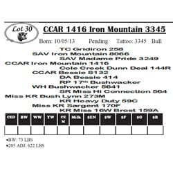 Lot 30 - CCAR 1416 Iron Mountain 3345